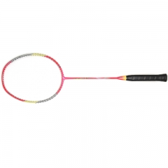 Wisdom and Intelligent Badminton Racket