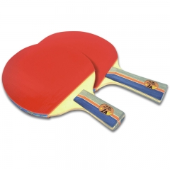 Double Fish Low Price Ping Pong for Beginners